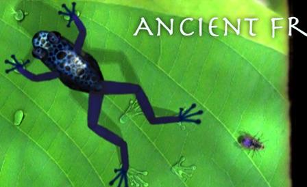 frog_banner