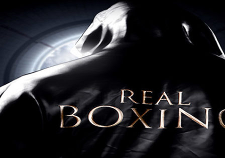Real-Boxing-Android-Game-live
