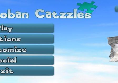 catzzles