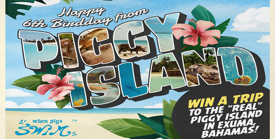 Angry-Birds-BirdDay-Giveaway-Poster