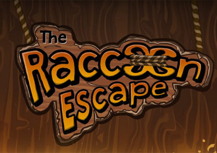 Raccoon-Escape-Android-Game