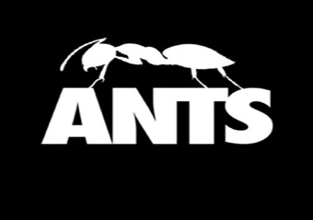 Ants-Game